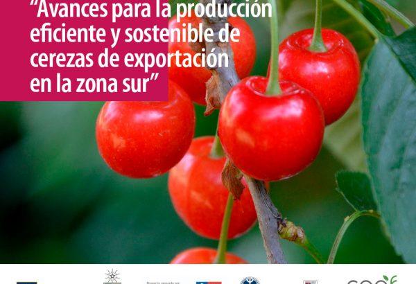 Coloquio Técnico: Avances para la producción eficiente y sostenible de cerezas de exportación  en la zona sur