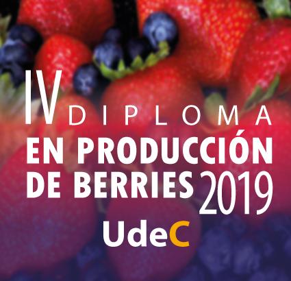 Diploma en Producción de Berries 2019