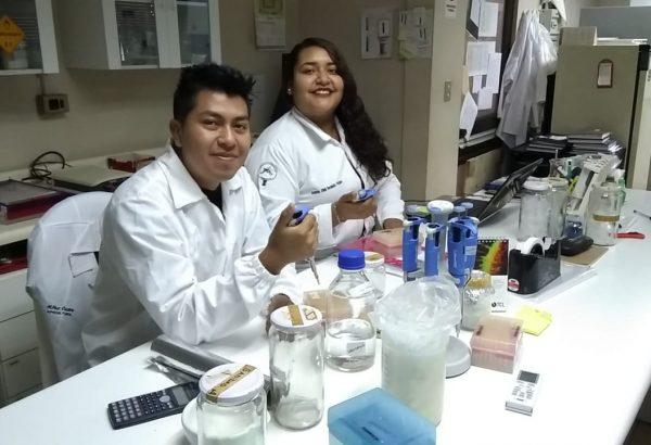 Estudiantes de México realizaron pasantía en Agronomía UdeC